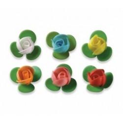 Boboci de trandafir